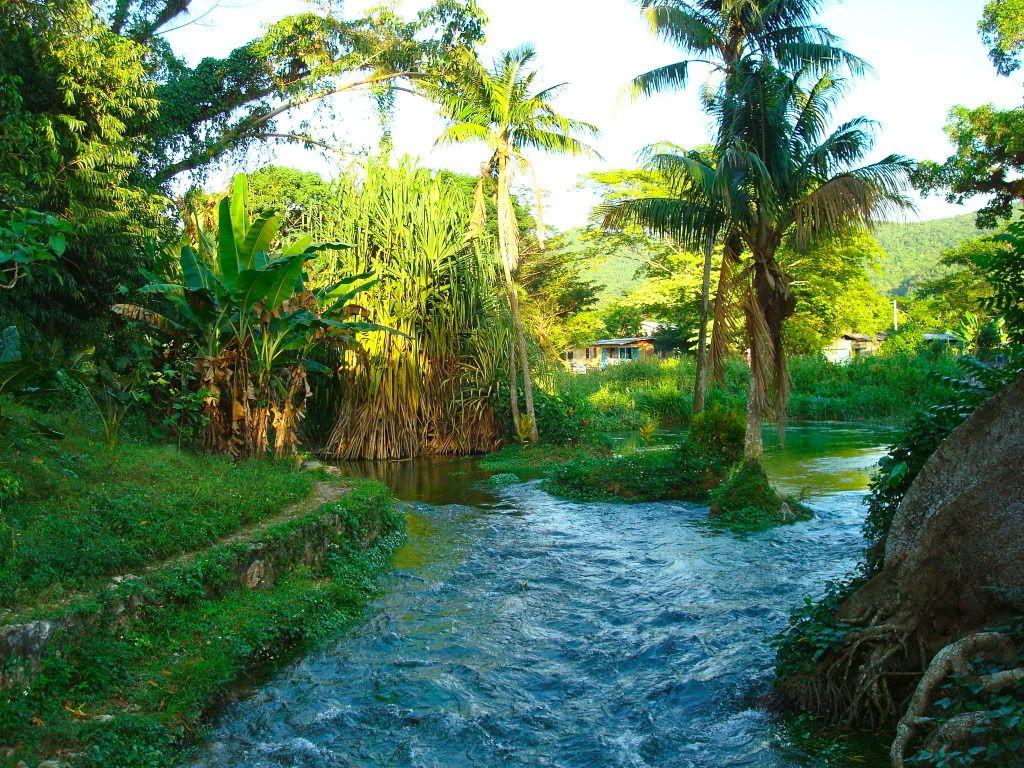 Jamaican Landscape Attractions In Jamaica Jamaica Travel Jamaica