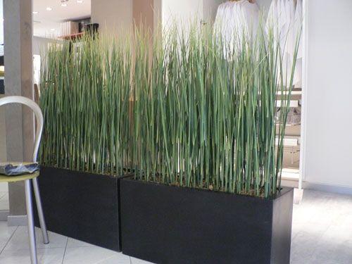Separadores de ambientes buscar con google tienda - Plantas ikea naturales ...