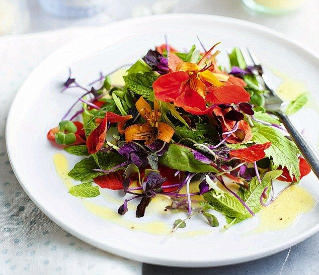 Salad days are on the way spring leaves and edible flowers edible spring leaves and edible flowers mightylinksfo
