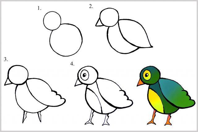 Techniques Faciles Pour Apprendre Dessiner Enfants Oiseau Pour Ma Choupinette Pinterest