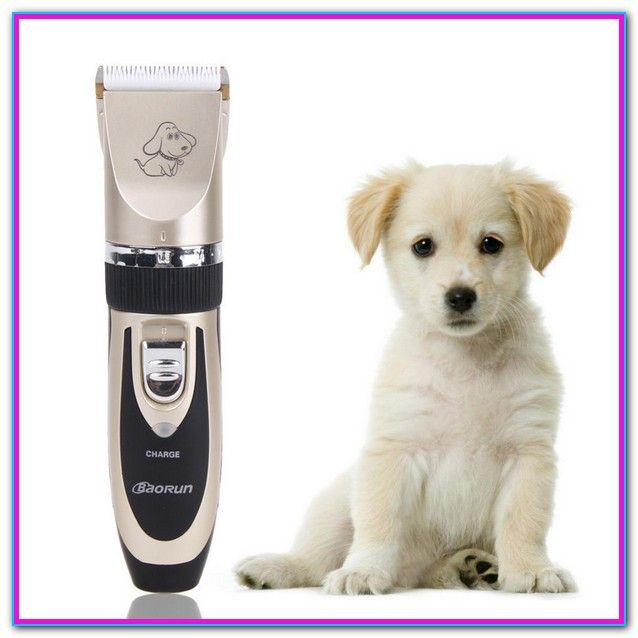 Professional Dog Grooming Supplies Canada Deboer