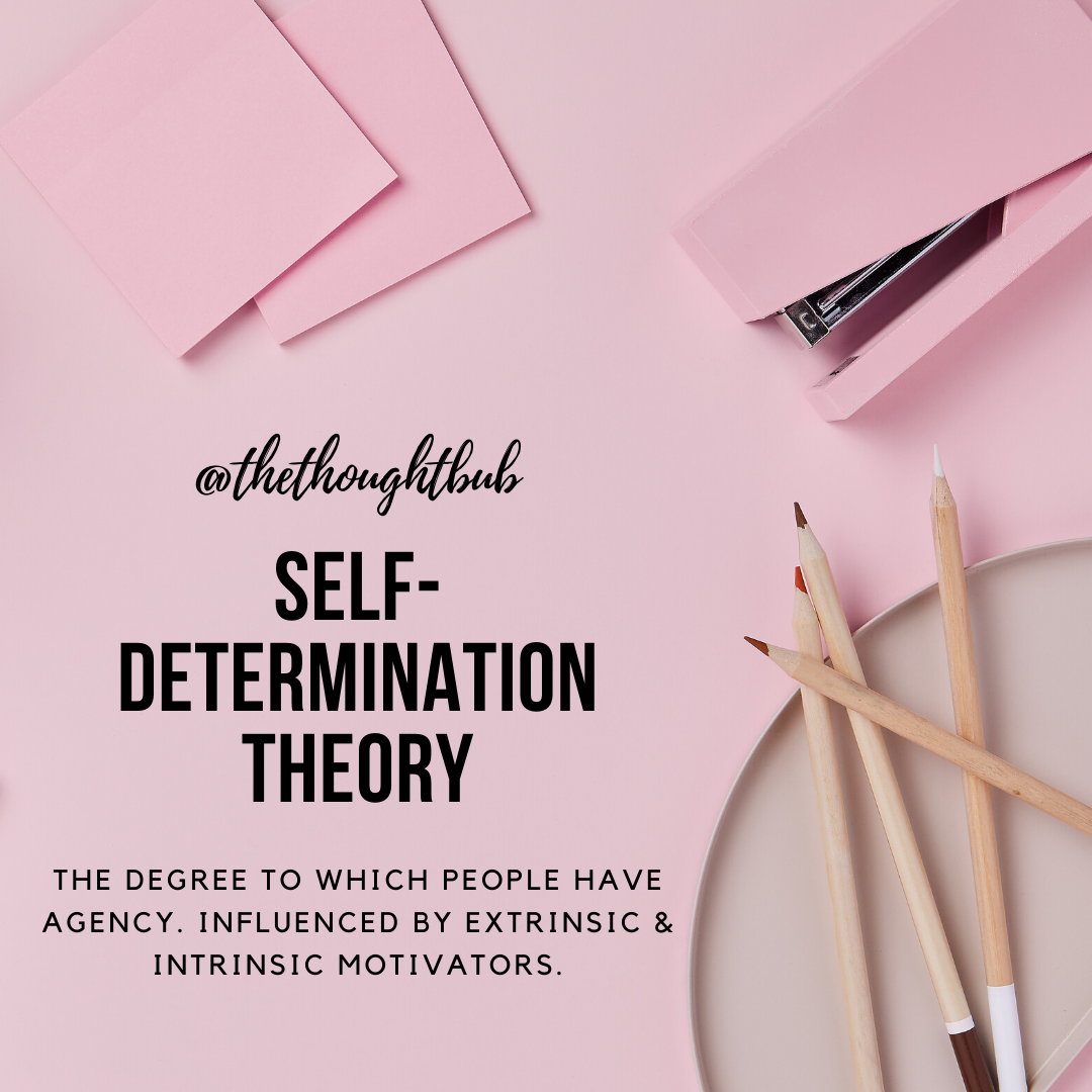 Social Work Psychology Theory Of Self Determination