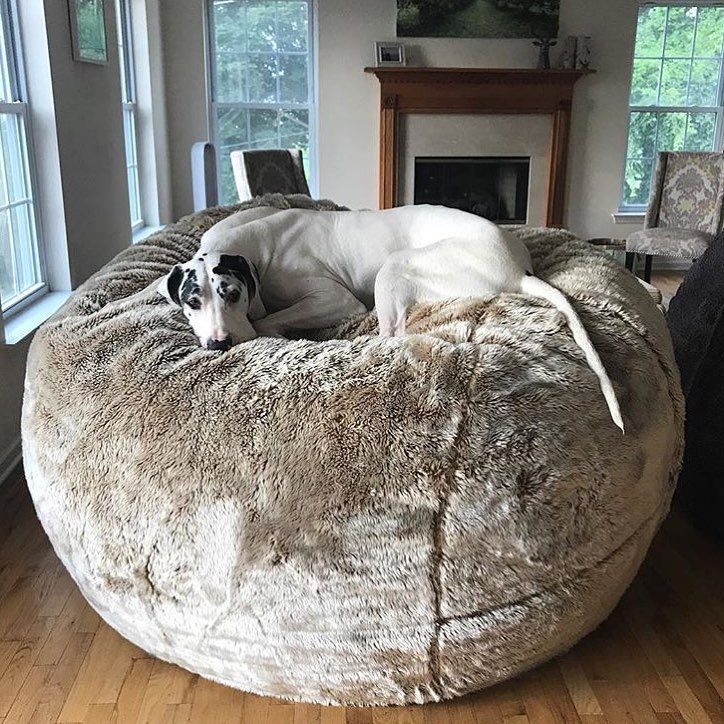 BigOne Bean bag chair, Giant bean bag chair, Dog bed