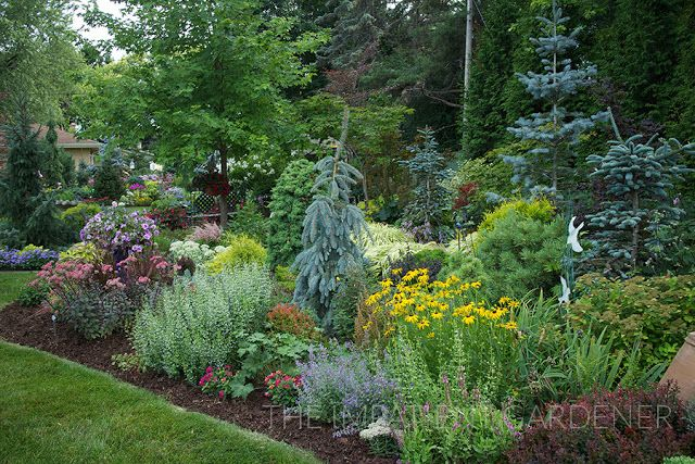Garden Tour Where Conifers And Texture Rule Garden Landscape Design Conifers Garden Garden Types