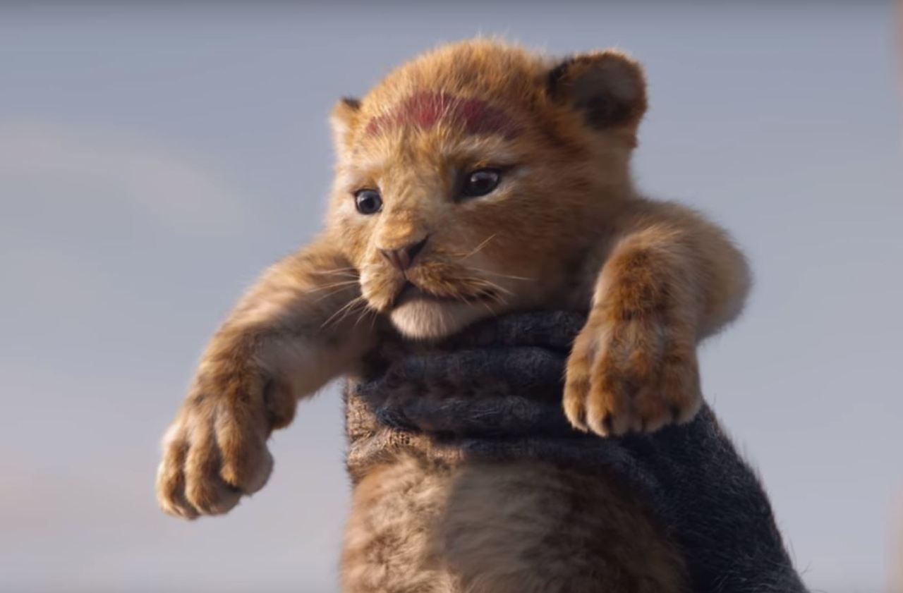 Epingle Sur Le Roi Lion