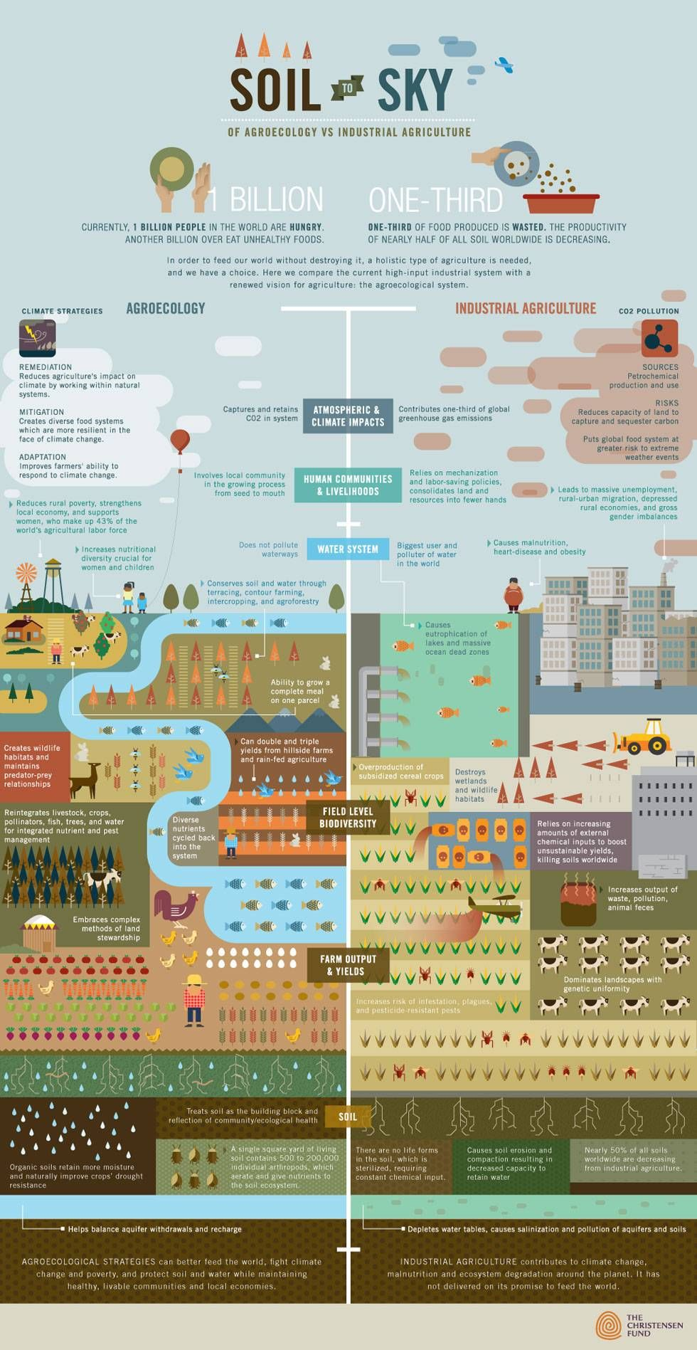 How to feed the world without destroying it [Infographic]