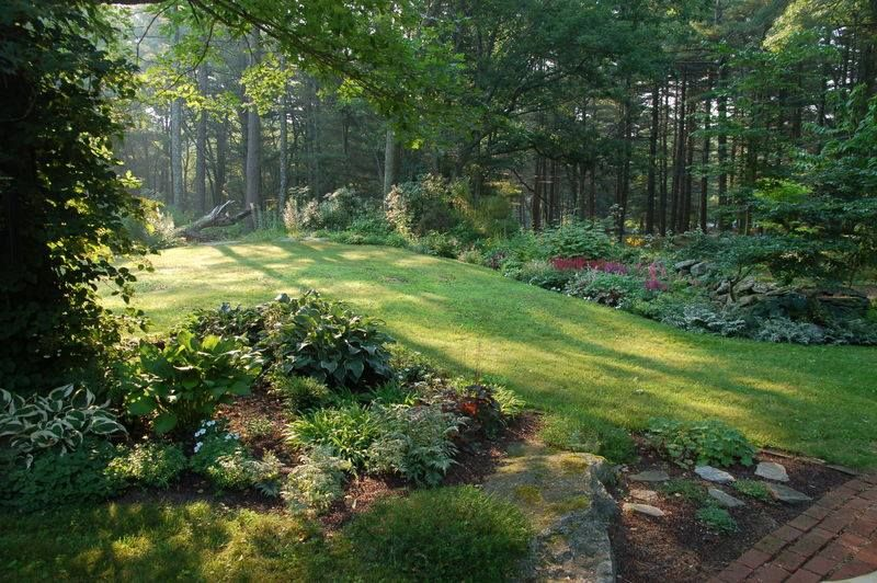 A Gorgeous Garden Perfect With The Woodland Shadows In The Back Wooded Backyard Landscape Beautiful Gardens Backyard Landscaping