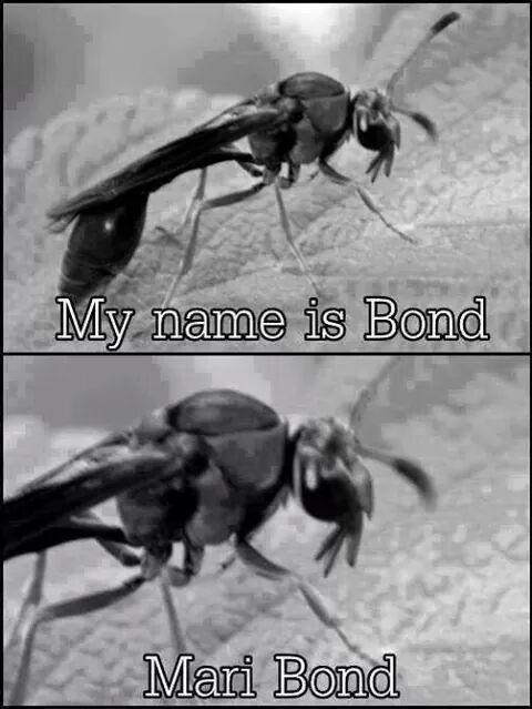 Bond... Mari Bond