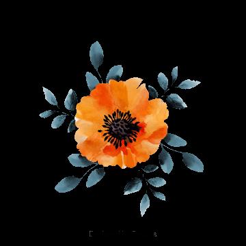 Flores Aguarela Flores Vetor Imagem Png E Psd Para Download Gratuito Floral Watercolor Watercolor Flowers Flower Prints Art