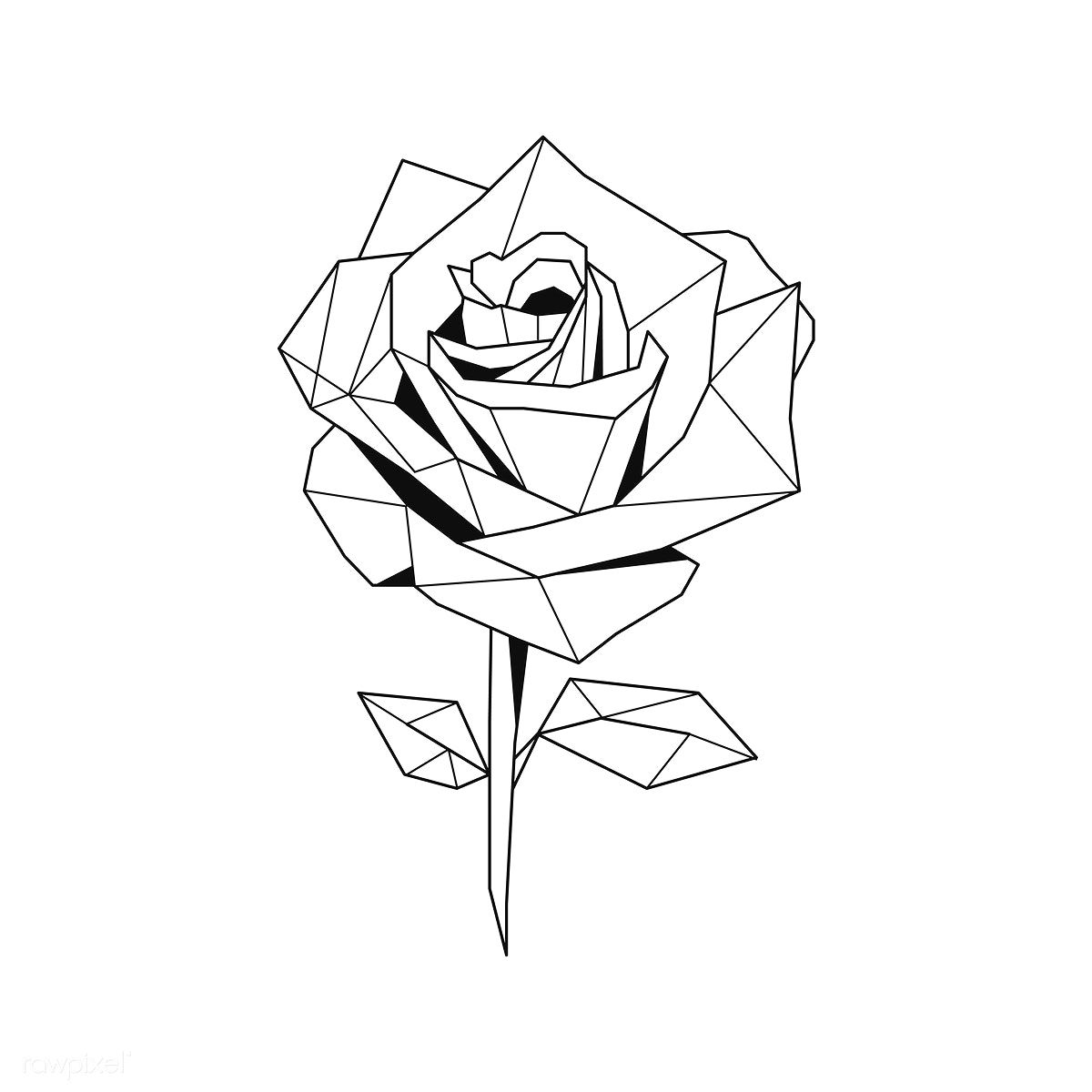 Download premium vector of Linear illustration of a rose flower 518002 -   12 geometric planting Illustration ideas