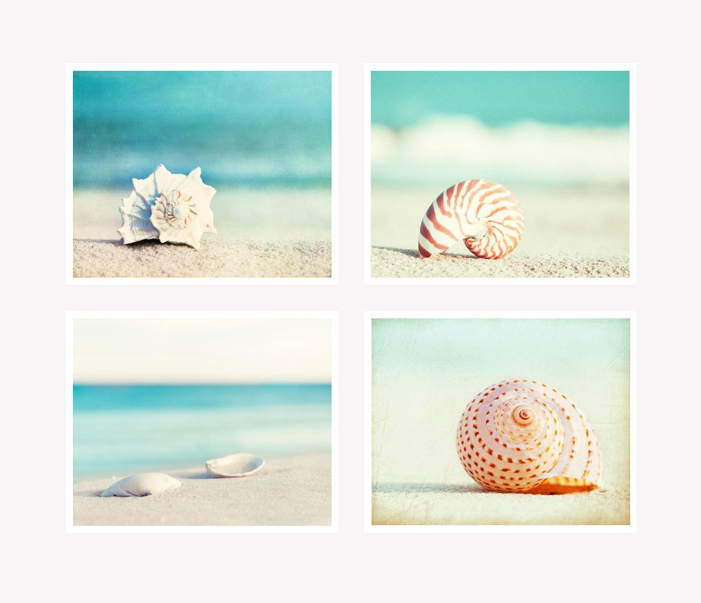 Bathroom Wall Art Canvas Artwork Nautical Coral Reef Ocean: Seashell Photography Set Of 4