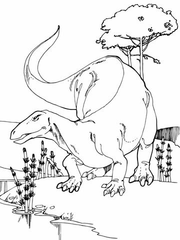 Camptosaurus Jurassic Dinosaur Coloring Page From Category Select 26388 Printable Crafts Of Cartoons