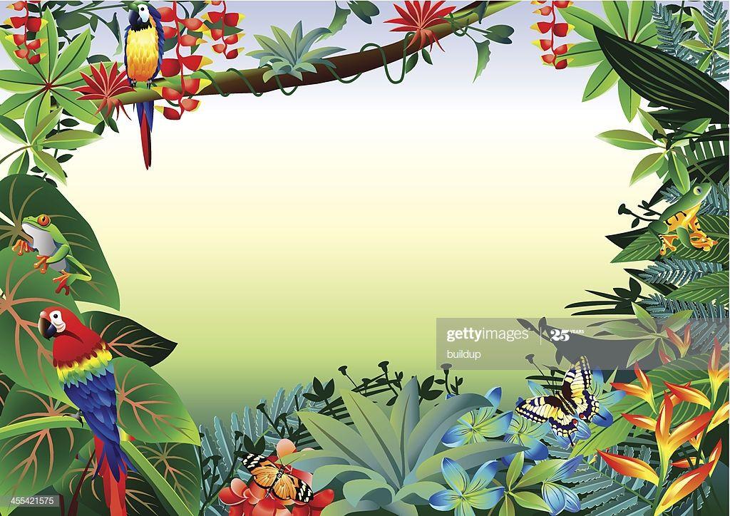 Vector Illustrator Of Rainforest Tropical Border Tropical Illustration Illustration Rainforest