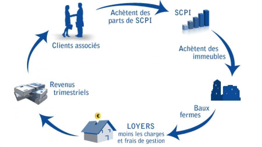 Grace Aux Scpi Societe Civile De Placement Immobilier Les Epargnants Peuvent Investir Dans L Immobilier D Entrepr Diagnostic Immobilier Placement Immobilier