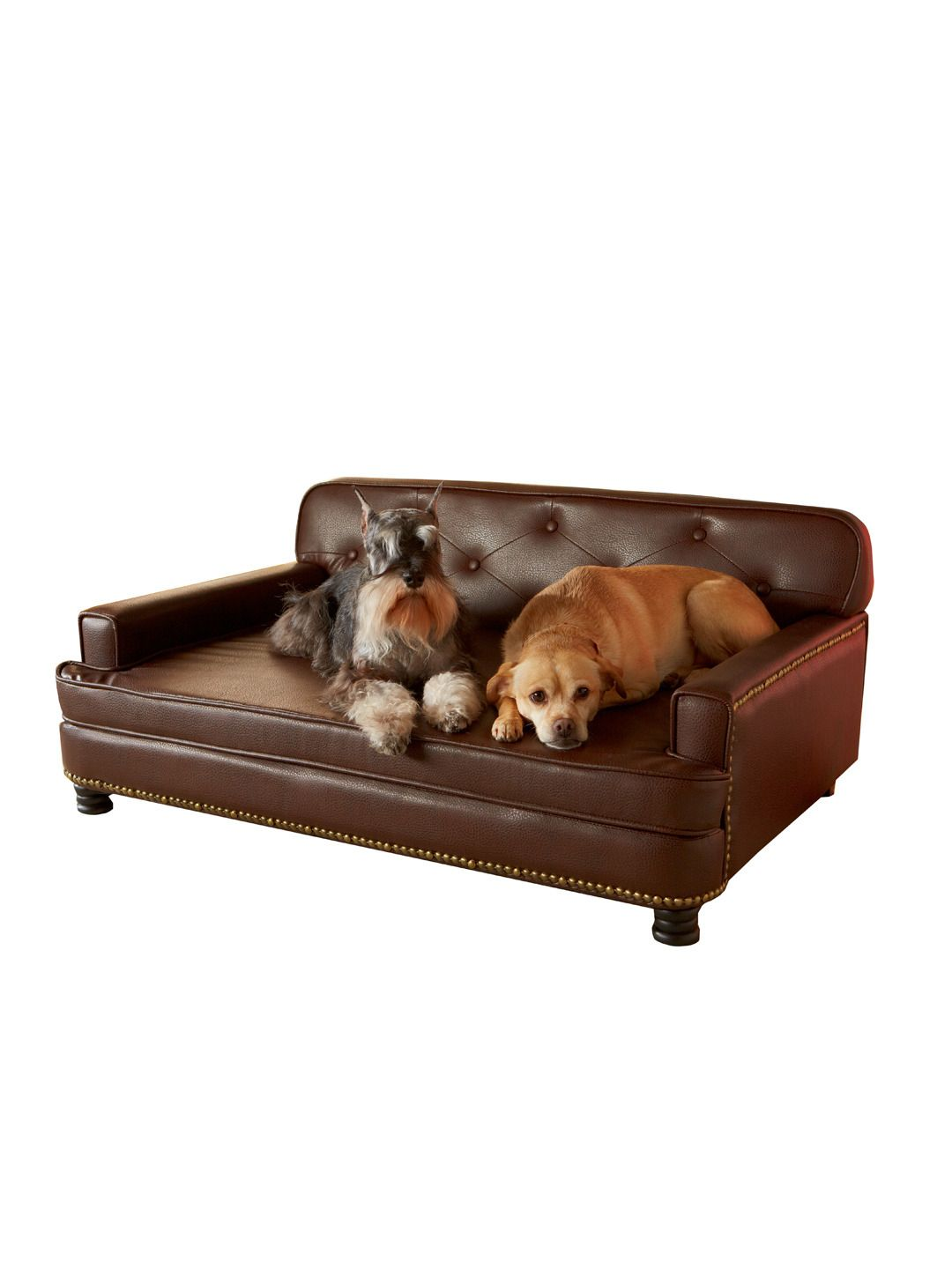 Library Sofa by Enchanted Home Pet at Gilt Pet sofa bed