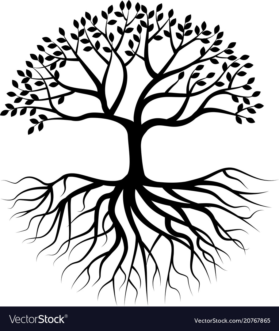 Root Royalty Free Vector Image Tree Silhouette Roots Illustration Tree Of Life Art