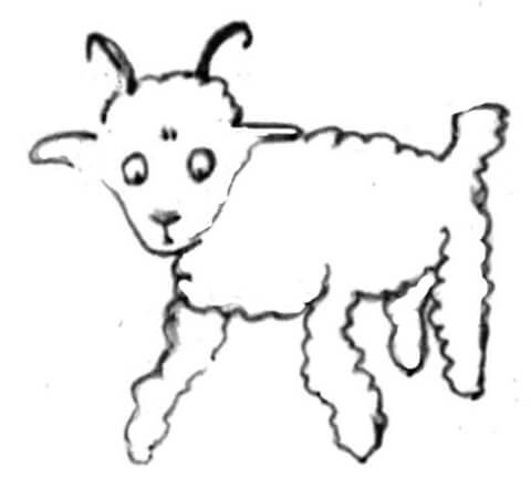 A Sheep Drawing For Little Prince Coloring Page From Little Prince