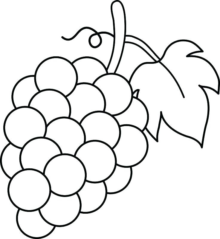 Grapes Coloring Pages Fruit Coloring Pages Grape Drawing
