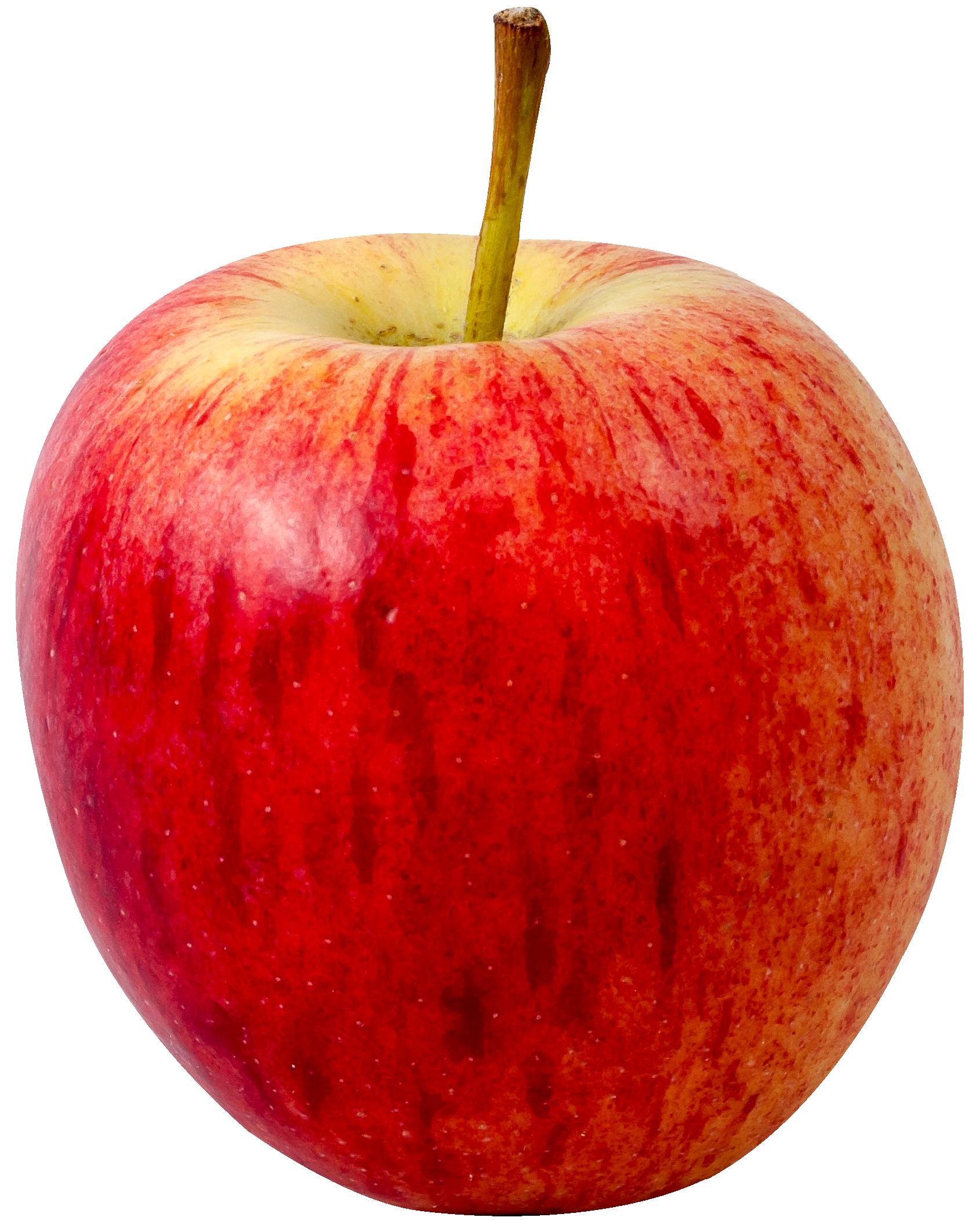 Ripe Apple PNG Image Fruits images, Apple, Fruit