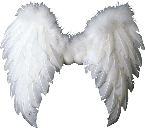 Pin by SCARY CEIA on Photo Editing. ♡ Angel wings png