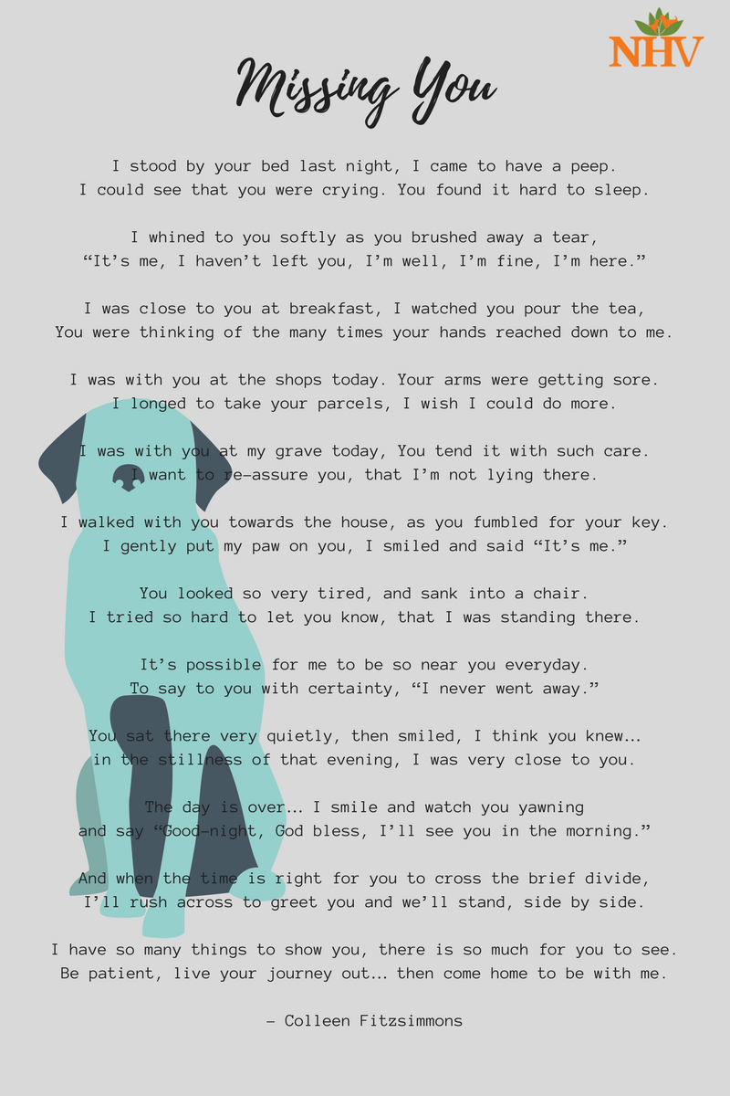 while at the door poem dog - Google Search