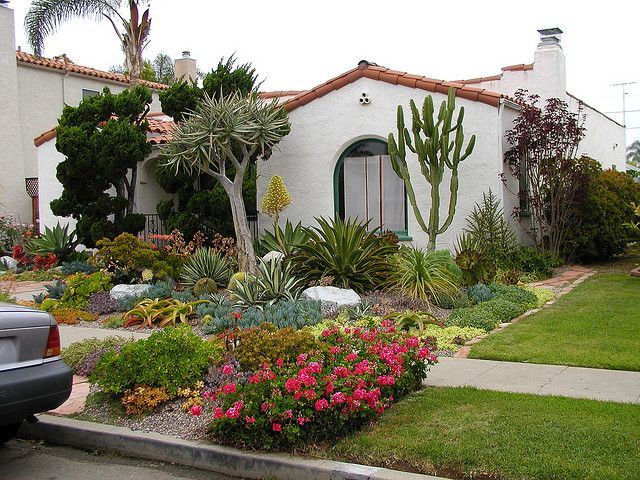 P5030047 San Diego Yard Featuring Xeriscaping Small Front