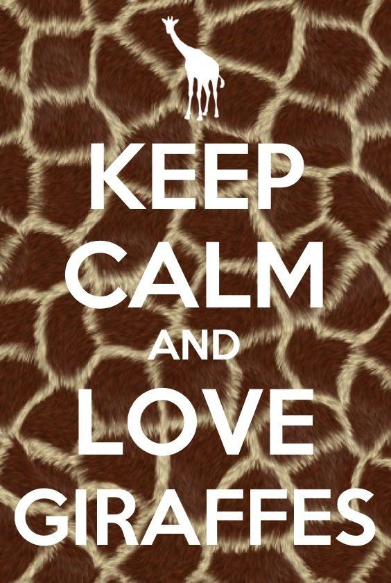 keep calm and love giraffes keep calm pinterest. Black Bedroom Furniture Sets. Home Design Ideas