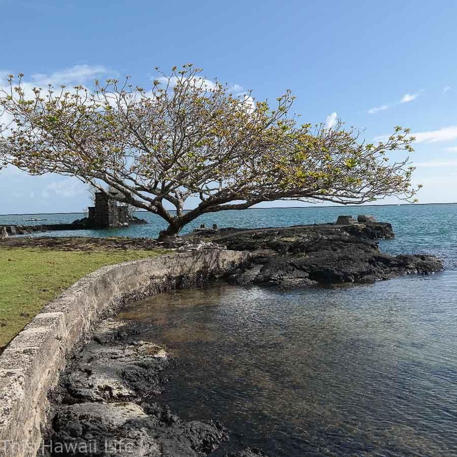 Big Island Beaches: Big Island, Green Sand Beach
