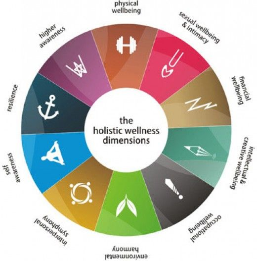 Healing What Do You Require As A Soul A Spirit A Persona And An Ego Part 1 Wellness Wheel Holistic Wellness Holistic