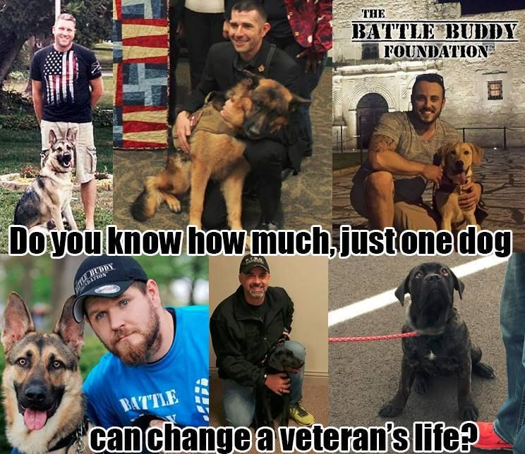 The Battle Buddy Foundation is a non-profit 501(c)3 organization founded by combat veterans to serve veterans, with a combined mission of providing service dogs to disabled veterans of all eras at no cost, providing employment through our Veteran Mentorship and Employment Program, providing a network of Veteran support and family events, while promoting education and awareness