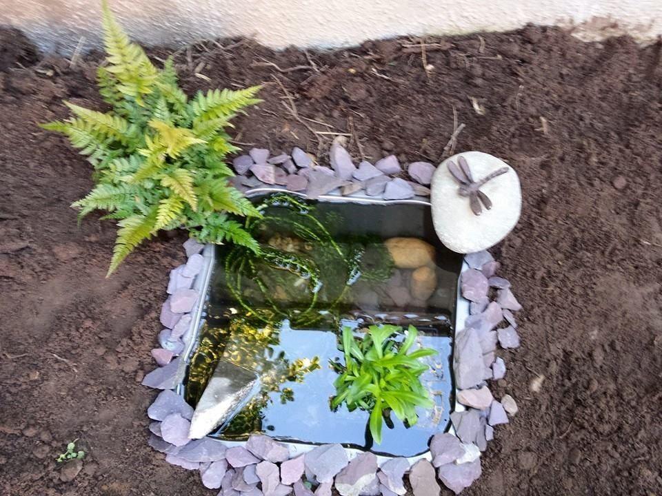 washing up bowl frog pond   Wildlife gardening, Washing up ...