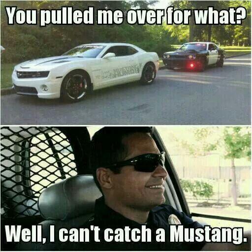 Mustang Terminator Meme