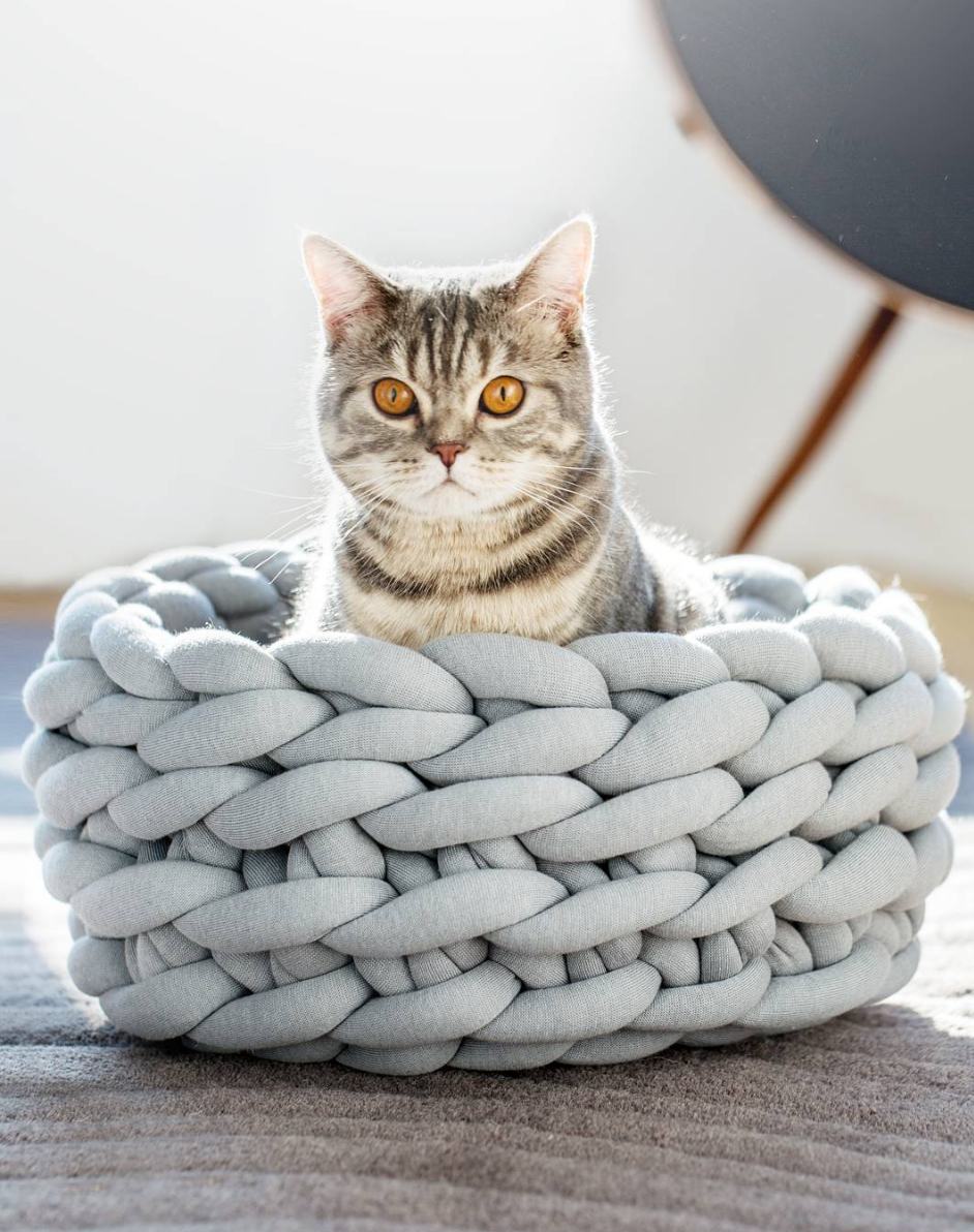 d95dbcfac72f This bed and like OMG! get some yourself some pawtastic adorable cat  apparel! Tap the link for an awesome selection cat and kitten products for  your feline ...