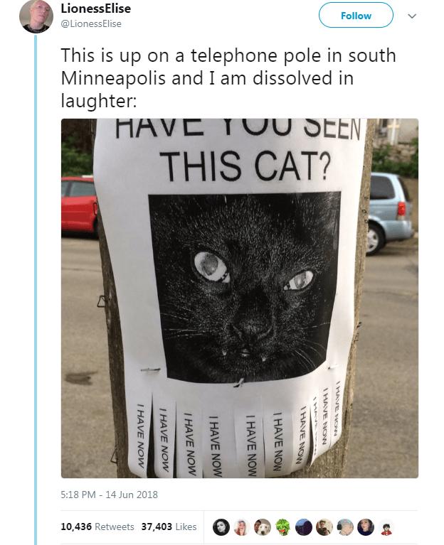 Pin On Animal Humor