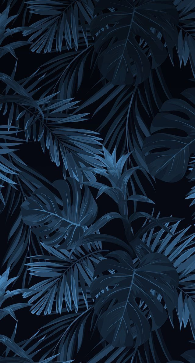 Download New Black Wallpaper for Smartphones 2019