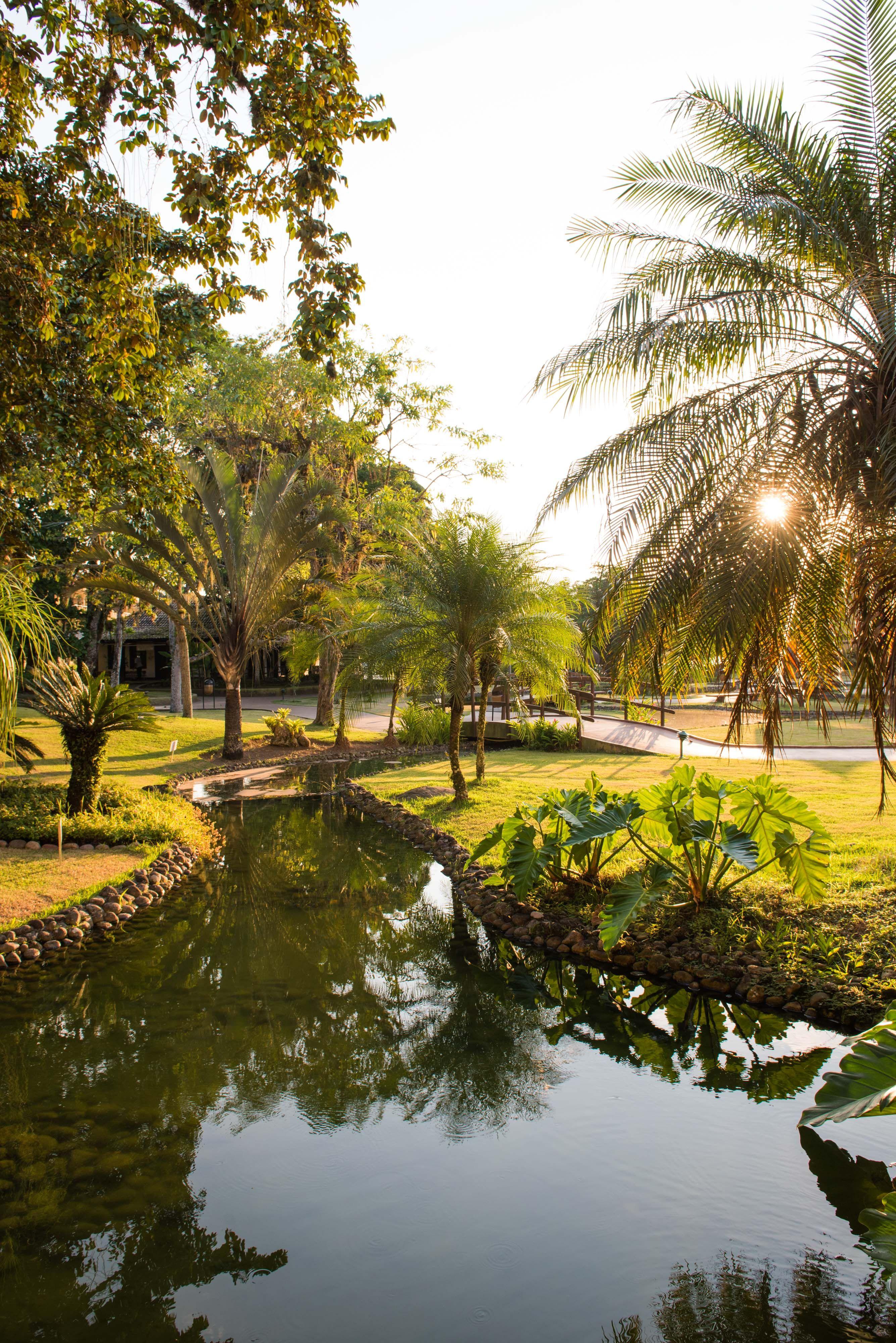 Natureza Vila Gale Eco Resort Angra Rio De Janeiro Brasil