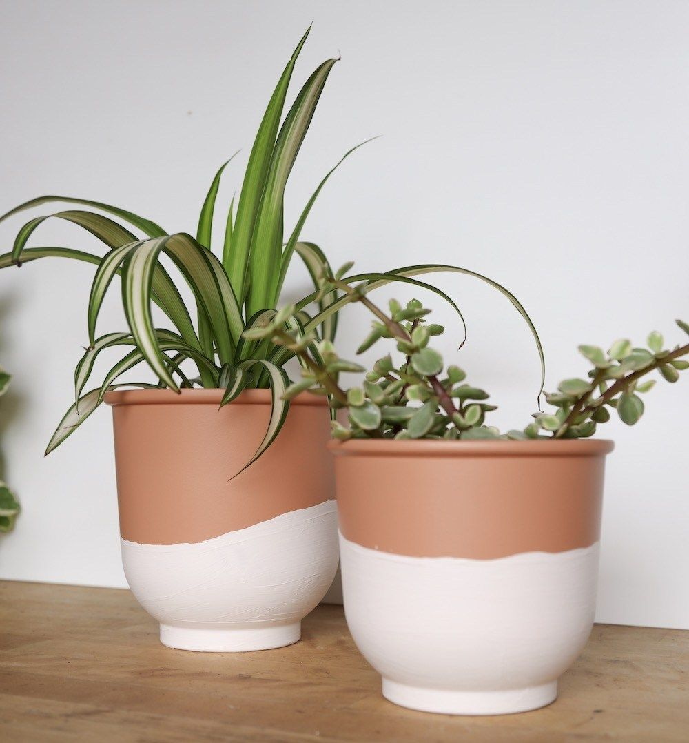 Twotone terra cotta pots DIY is part of Plant pot diy, Diy terra cotta pots, Plant pot design, Diy flower pots, Painted plant pots, Terracotta pots - Personalize your terra cotta pots with this quick and easy diy  All you need is paint and pots! See the project at xoxojackie com