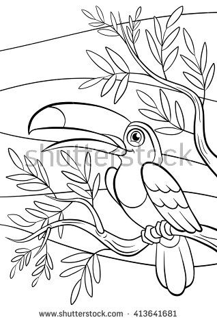 Coloring pages. Birds. Little cute toucan sits on the tree ...
