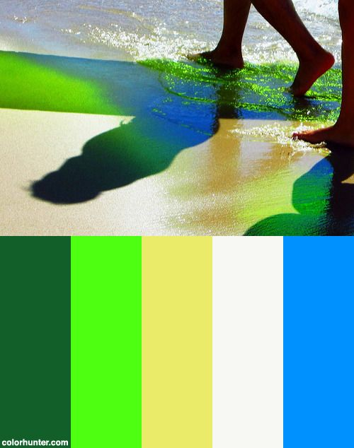 Anything Is Possible ... Color Scheme from colorhunter.com