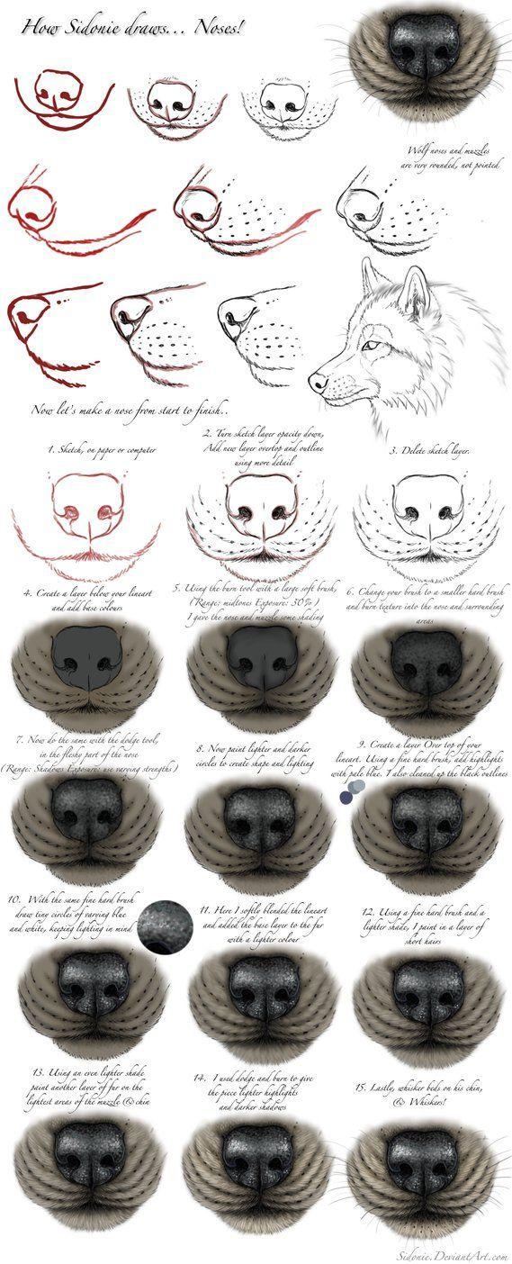 Nose Tutorial By Sidonie Anatomy Pinterest