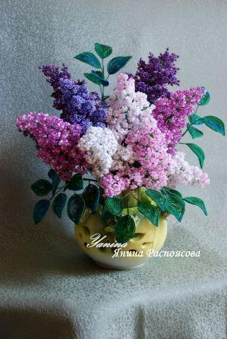 Всем кто любит цветы - сирени много не бывает)))))
