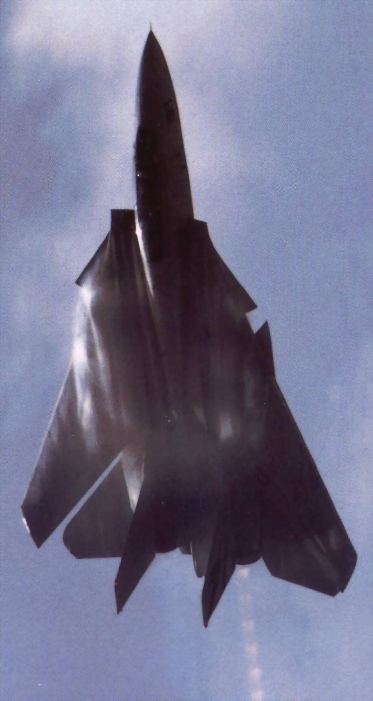F-14A - notice the glove vanes, triangular shaped retractable