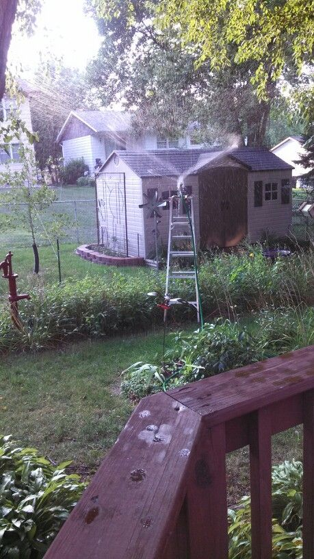 Added reach for watering...sprinkler clamped to step ladder