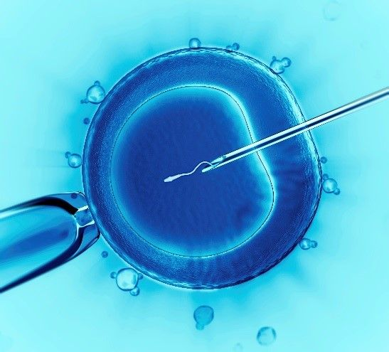 ICSI is applied primarily to alleviate problems of severe male infertility