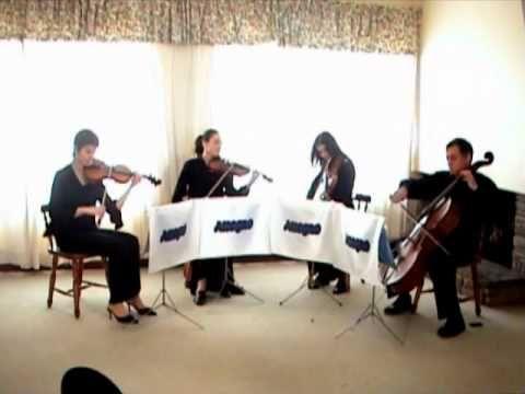 Lovely Wedding Music By Allegro String Quartet Durbans Most Popular Classical Ensemble