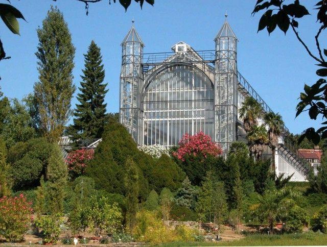 Exploring Berlin Zehlendorf Dahlem And Wannsee Botanical Gardens Tropical Greenhouses Botanical