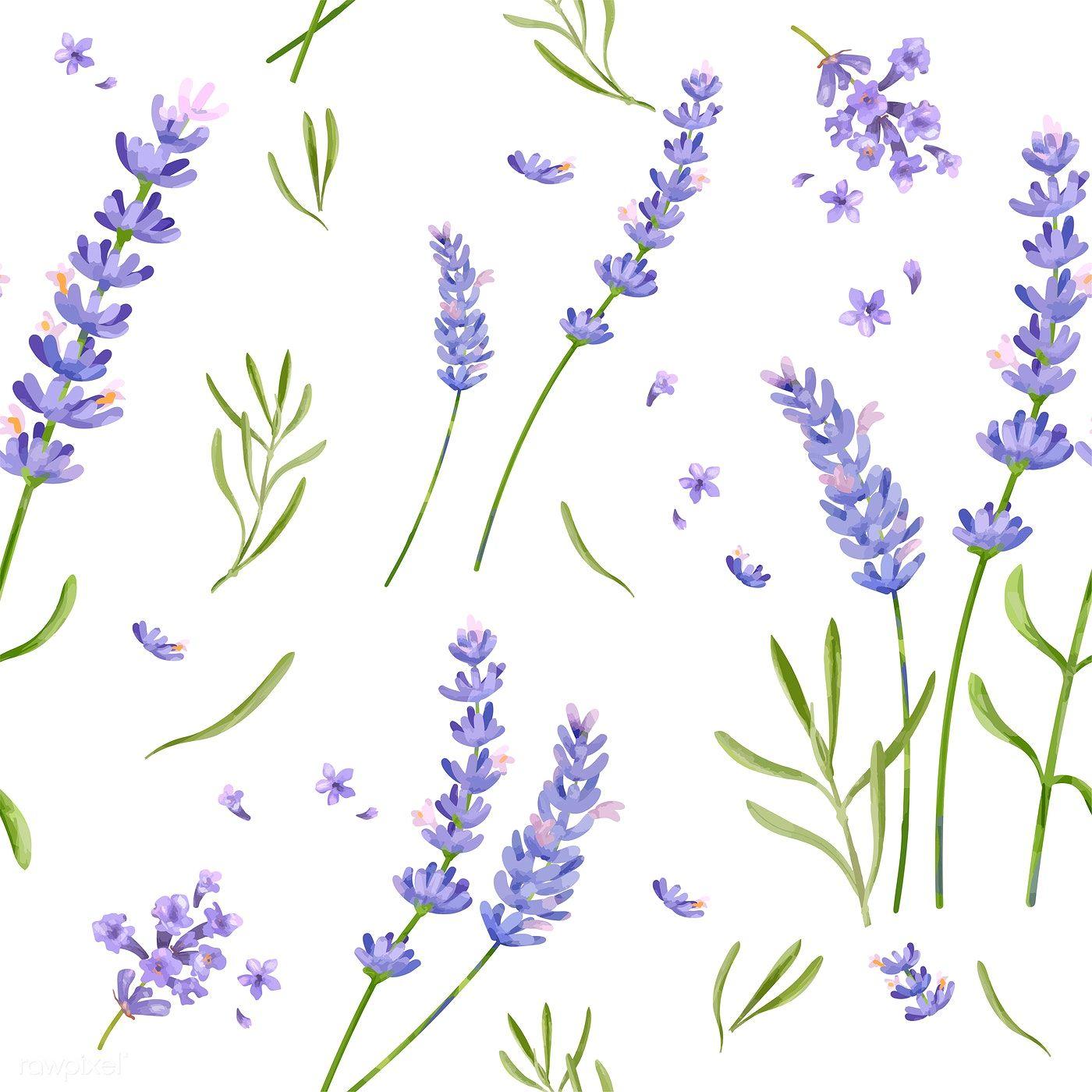 Download Premium Vector Of Hand Drawn Lavender Flower Pattern 421500 Flower Drawing Phlox Flowers Lavender Flowers