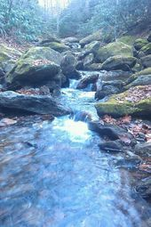 Photo of Great Smokey Mountain Wandern Great Smokey Mountain Wandern …