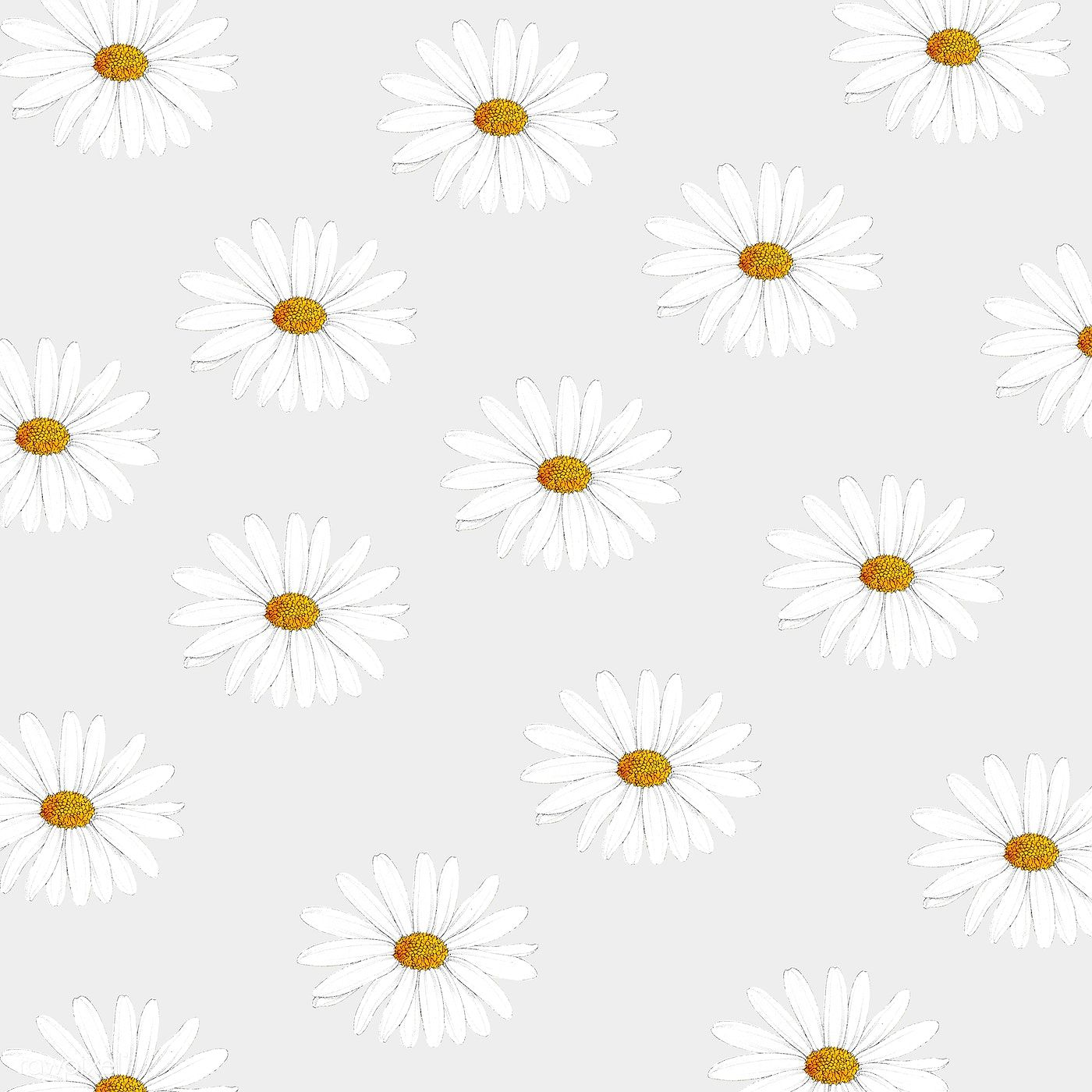 Download Premium Illustration Of White Daisy Patterned Banner Or Wallpaper In 2020 Daisy Pattern White Flower Bouquet Daisy Background
