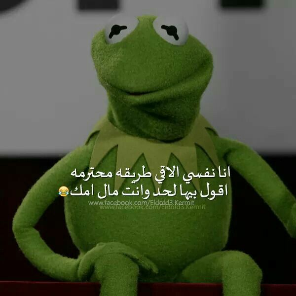 Pin By Ahmed Azazy On ضفدع Funny Comments Funny Qoutes Funny Arabic Quotes